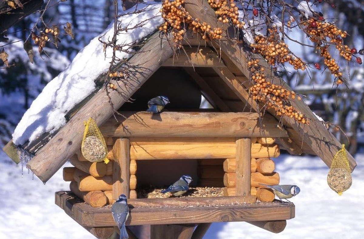Winterfutter und Häuschen